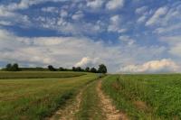 Über die Felder bei Bruthitze