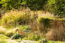 Der Garten von Frank - auch in diesem heißen Sommer wurde dieser Gartenteil nicht gewässert.