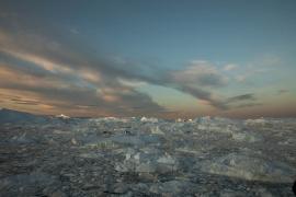Erstes Morgenlicht auf den Eisbergen