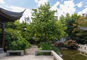 Der Blick auf den seitlich gelegenen schattigen Gartenbereich