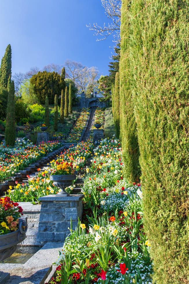 Blumen-Wassertreppe in vollem Flor