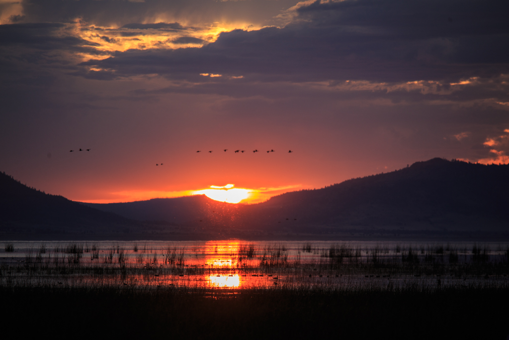Photo: Another Goose Lake sunset