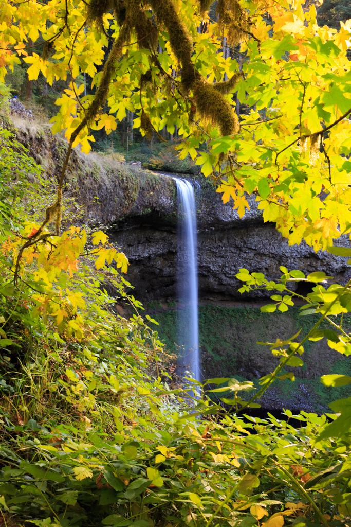 Photo: South Falls, Silver Falls