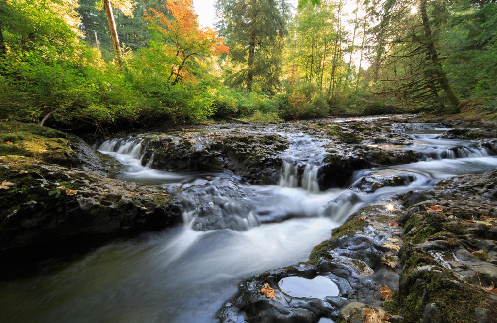 North Falls Wasserfall Silver Falls State Park Oregon