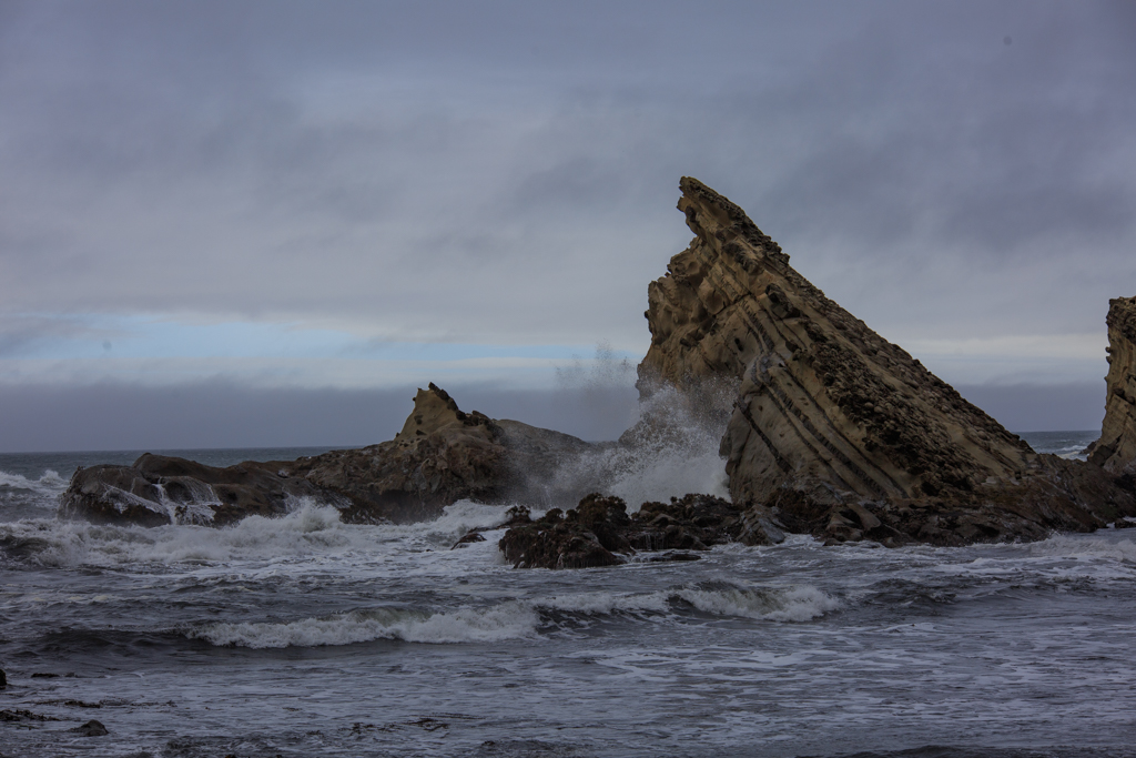 Cape Arago Felsen Oregon Küste