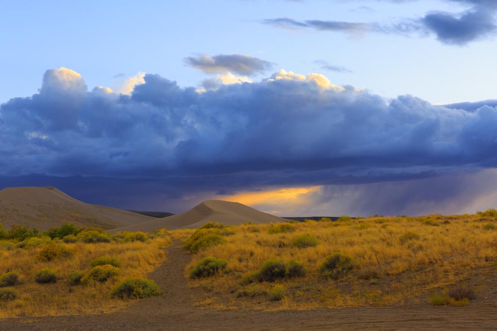 Bruneau Dunes im Sonnenuntergang