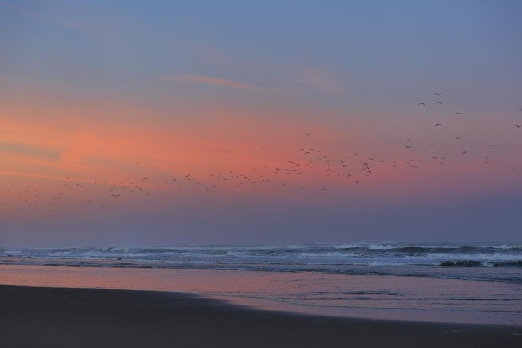 Sonnenaufgang am Tillicum Beach