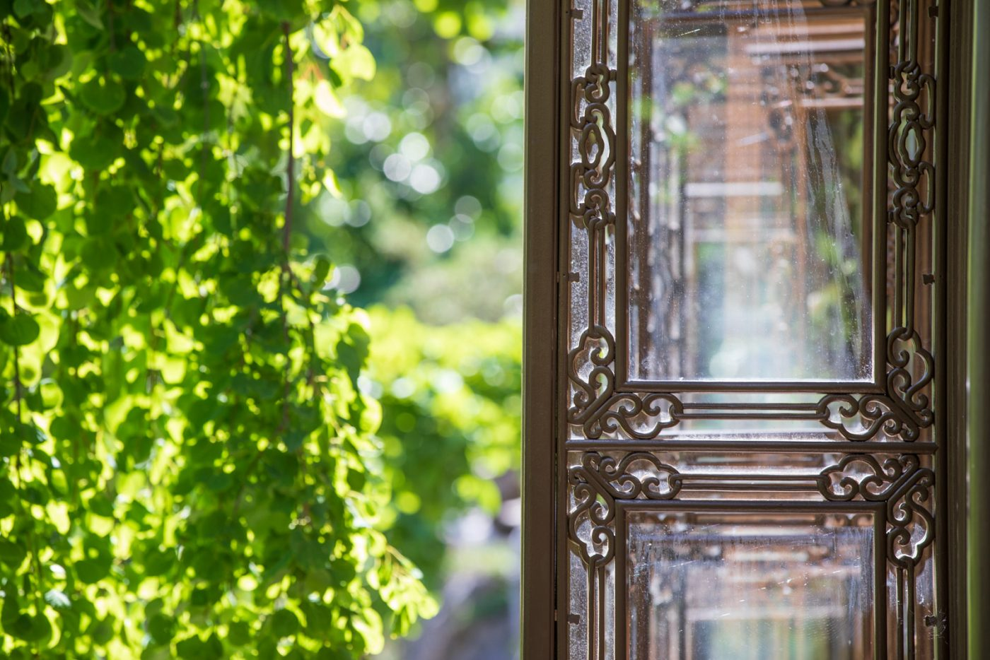 Photo: The carved windows of the tea house with Cercidiphyllum pendula