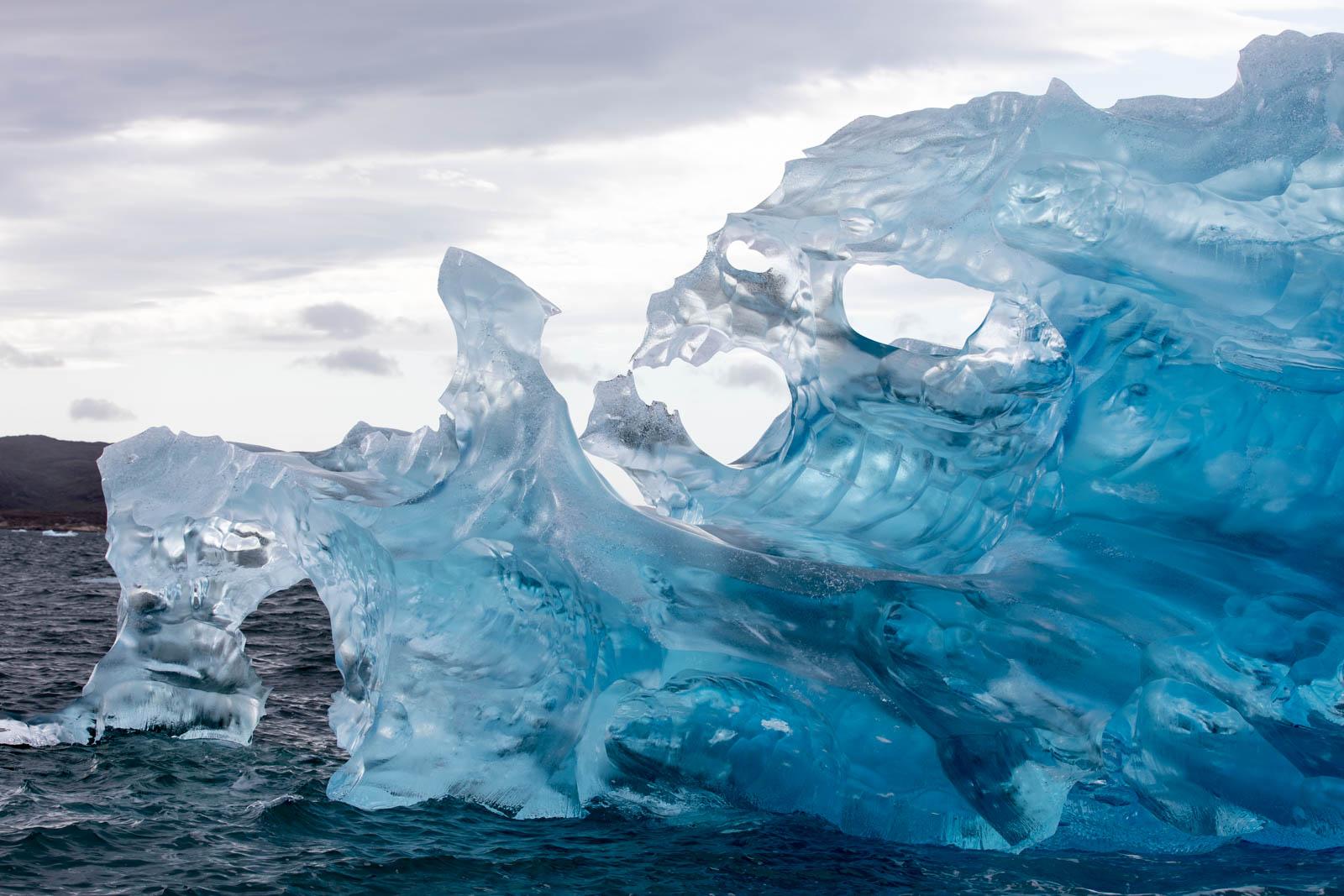 Photo: Der Piranha aus Eis