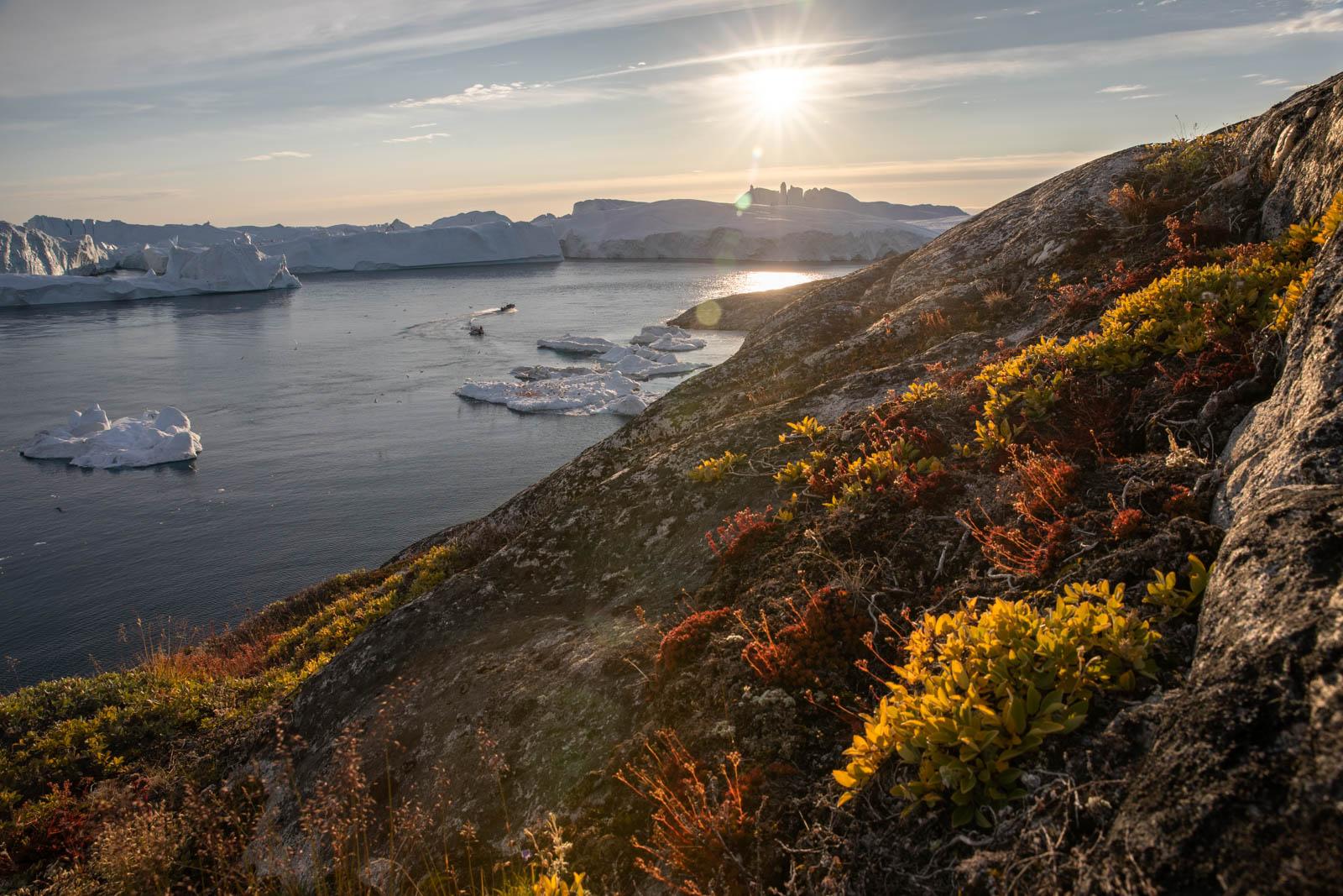 Gegenlicht an den Eisbergen von Ilulissat