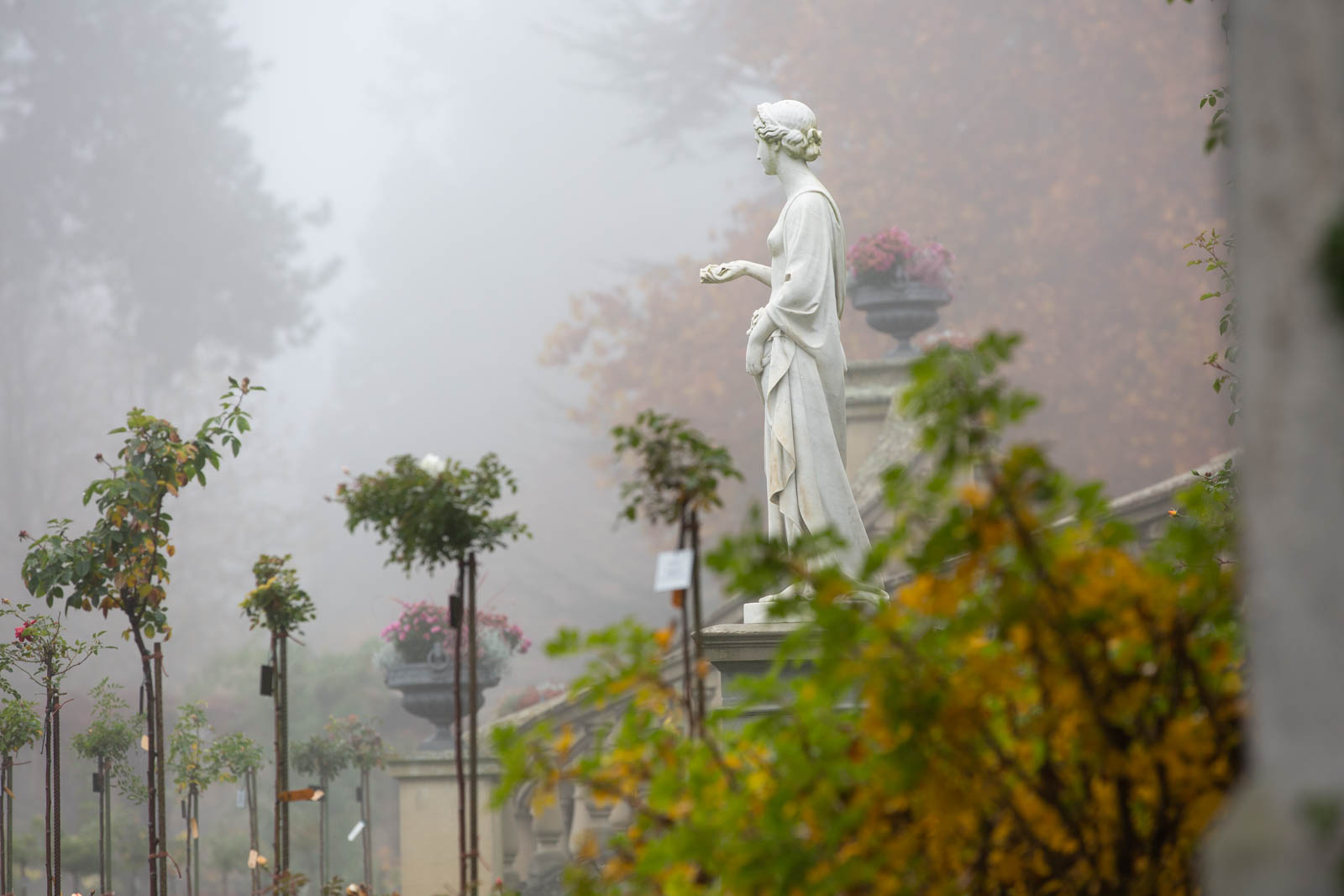 Statue im Italienischen Rosengarten, Mainau, Bodensee