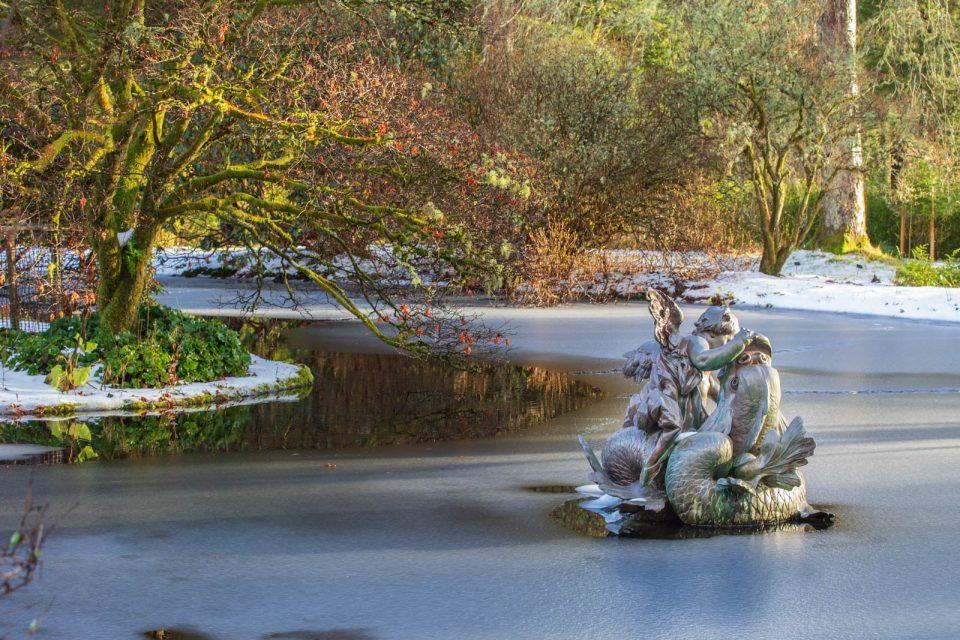 Pond, Benmore Botanic Garden, Schottland