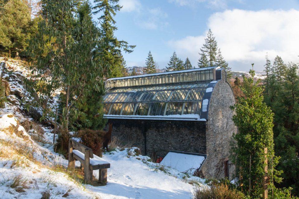 Fern House Benmore Botanic Garden, Schottland