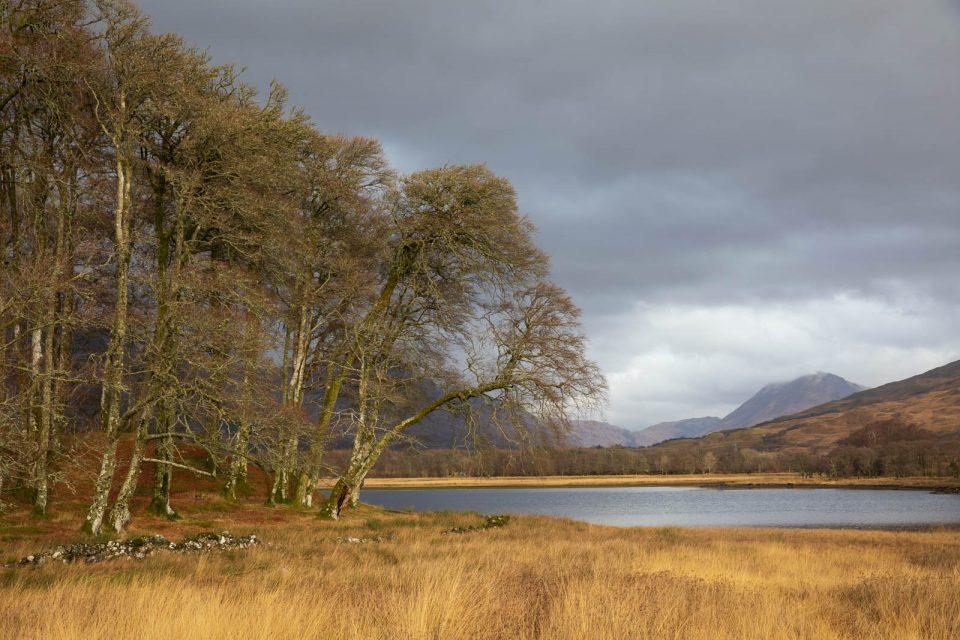 Lichtstimmung am oberen Ende des Loch Awe, Schottland im Winter