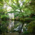 Botanischer Garten San Francisco, japanischer Garten Teich