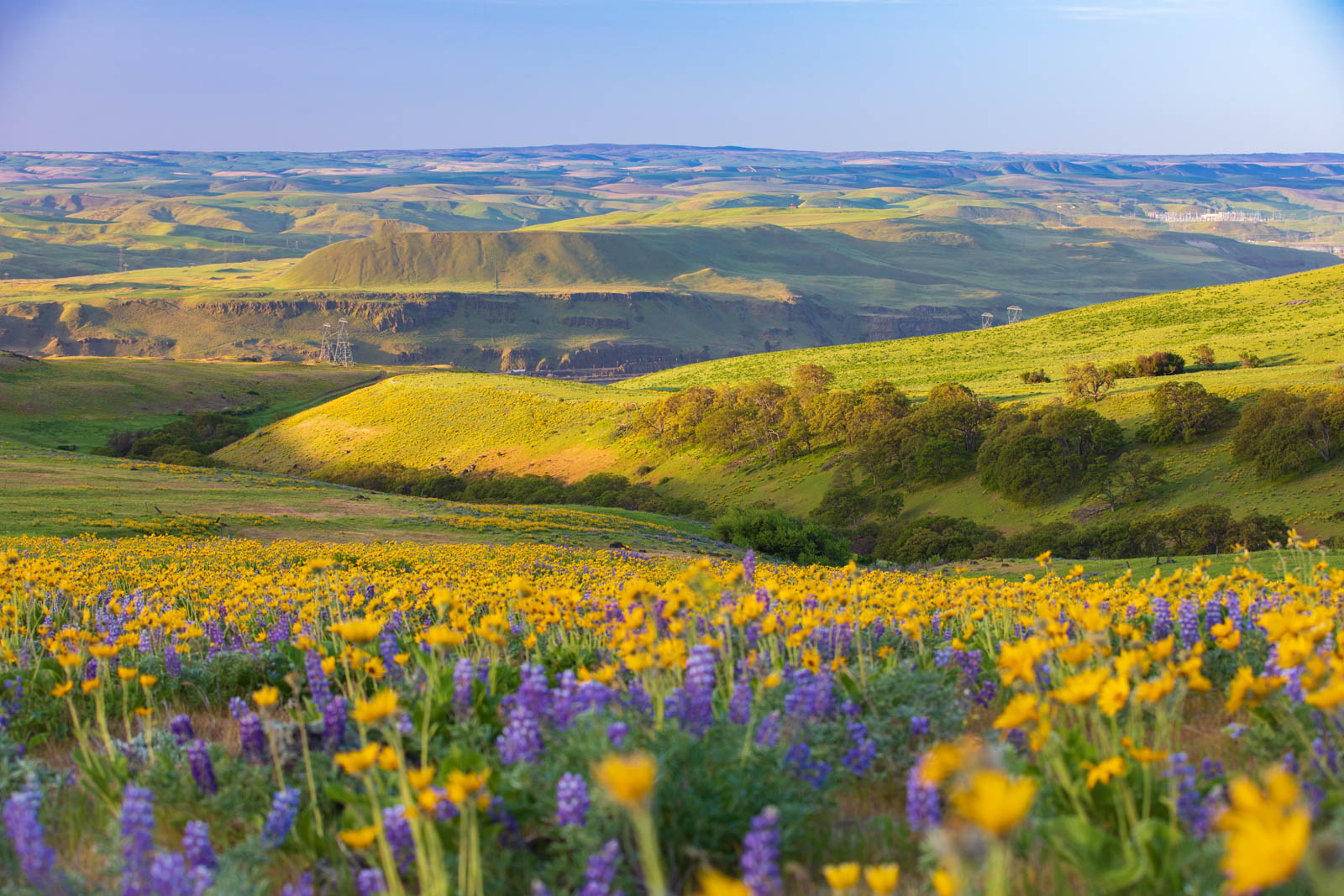 Columbia Hills, Washington, Drohne
