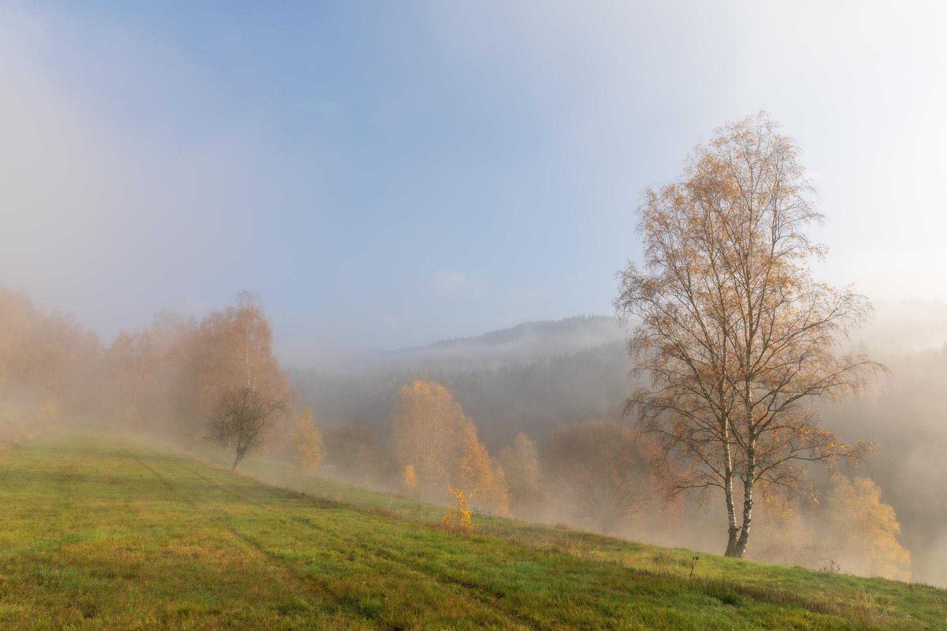 Photo: Der Nebel steigt auf