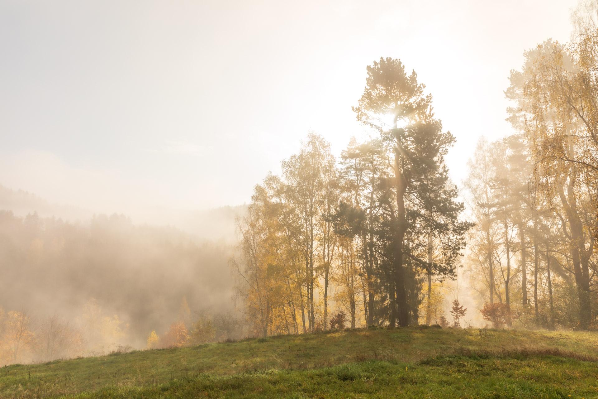 Photo: Nebelstimmung