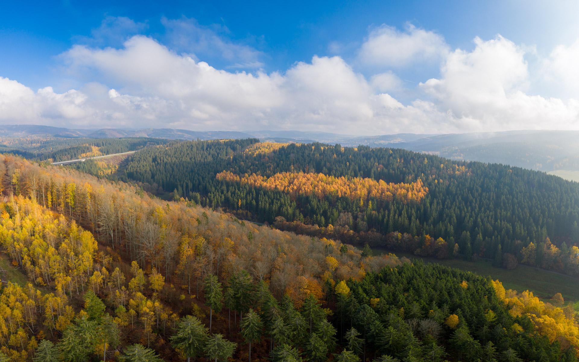 Photo: Schönste Herbststimmung