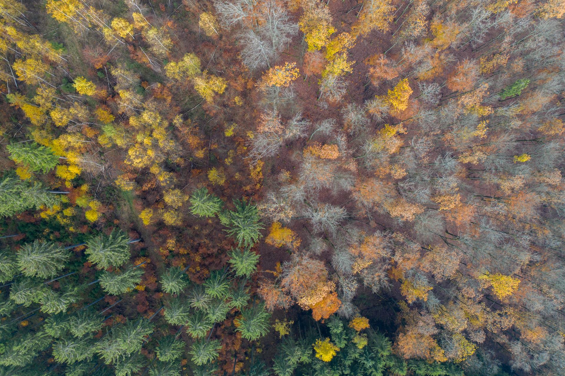 Photo: Von oben: Muster und Farben