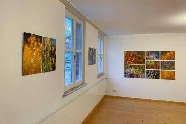 Im Grünen, Ausstellung Fotografie