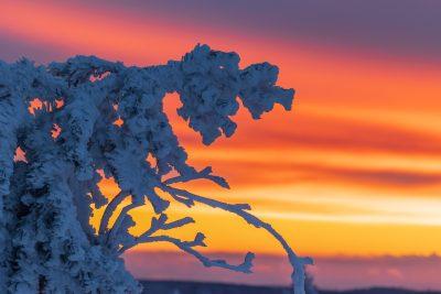 Photo: Winterstimmung